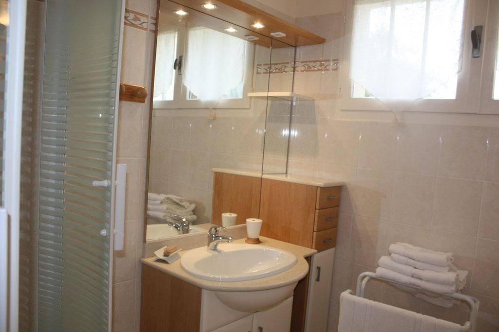 salle d'eau privée à la chambre Orchidée