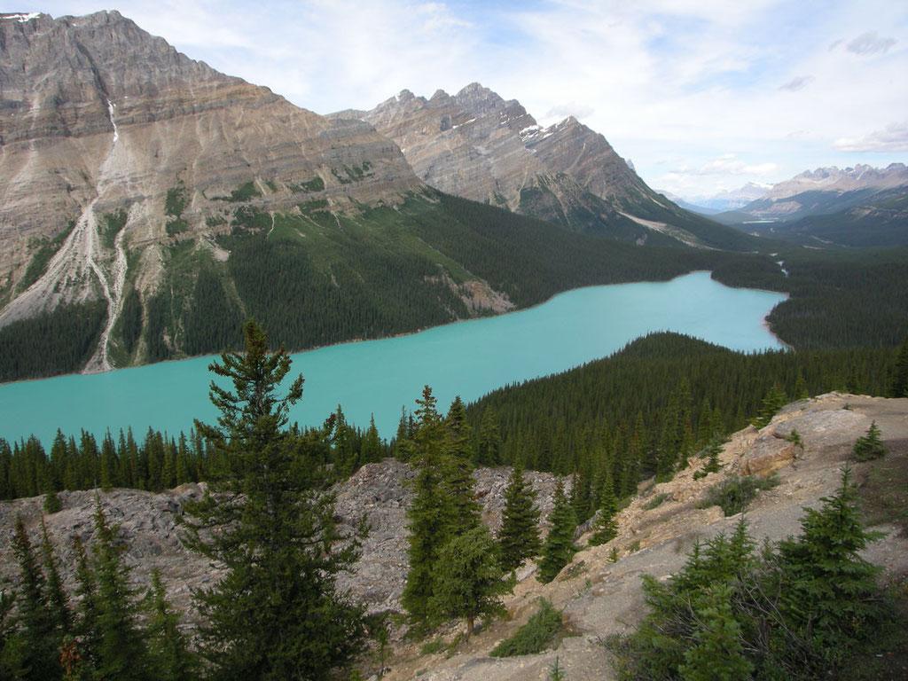 Kanada/Alberta: Peyto Lake