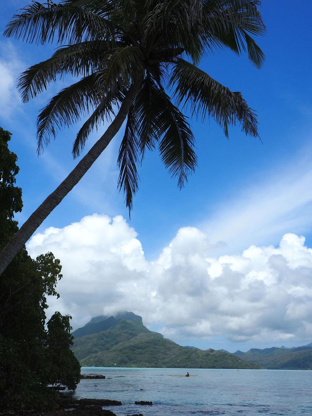 Französisch Polynesien: Blick von der kleinen Vogelinsel auf die heilige Insel Raiatea