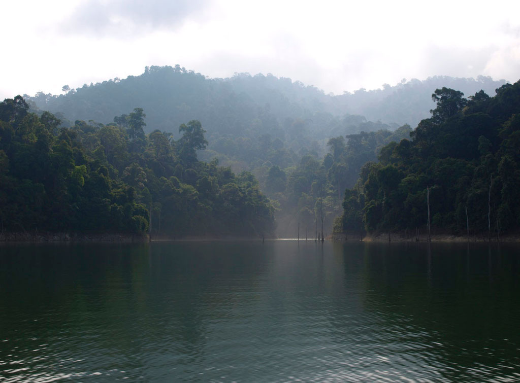 Malaysia: uralter Dschungel von Belum