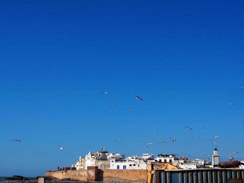 Marokko: Welterbestadt Essaouira am Atlantik