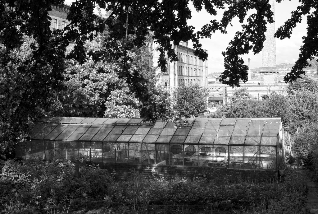 Saltaire Greenhouse
