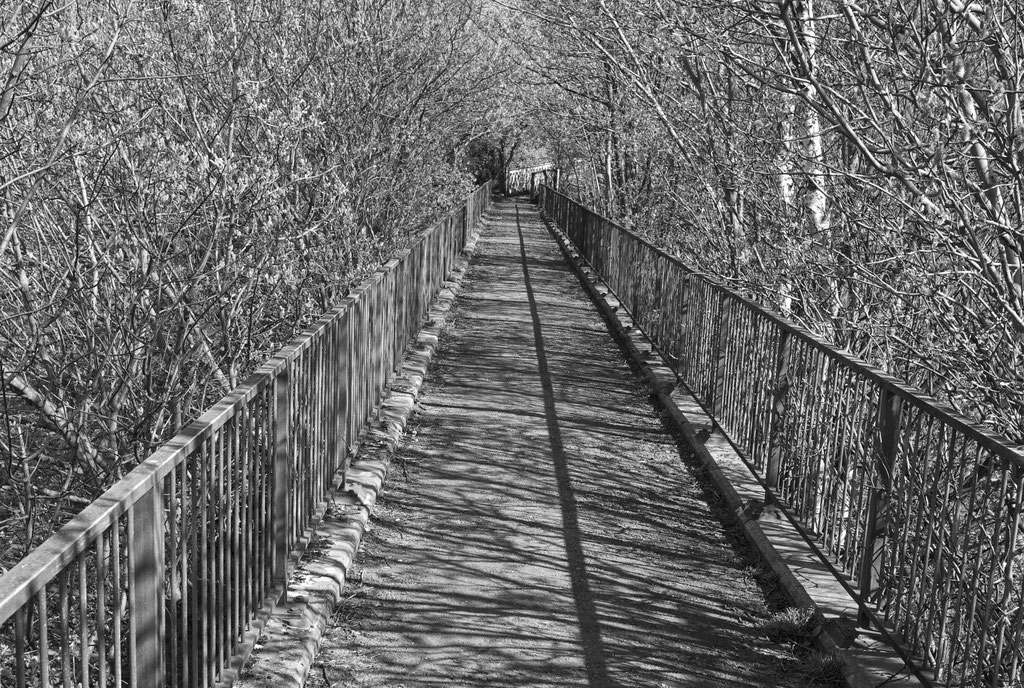 Shadow Line