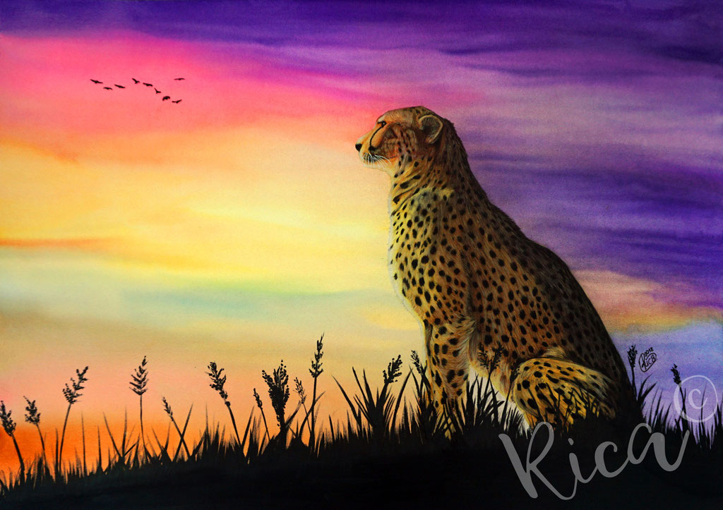 Kunstwerk: Gepard im Sonnenuntergang