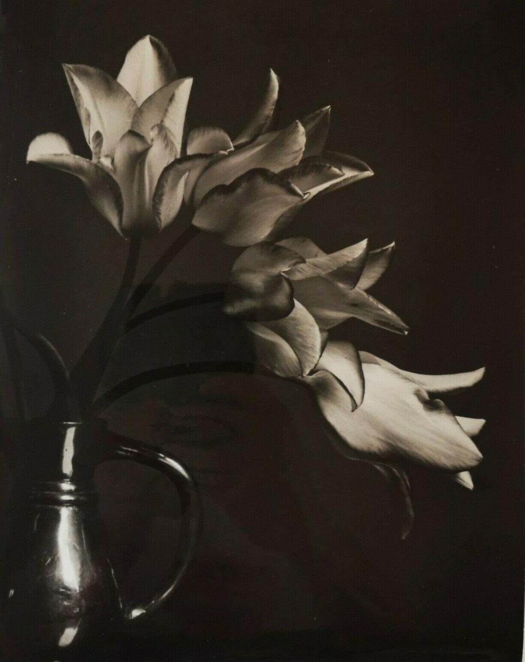 Vase de fleurs André Durand photgraphe