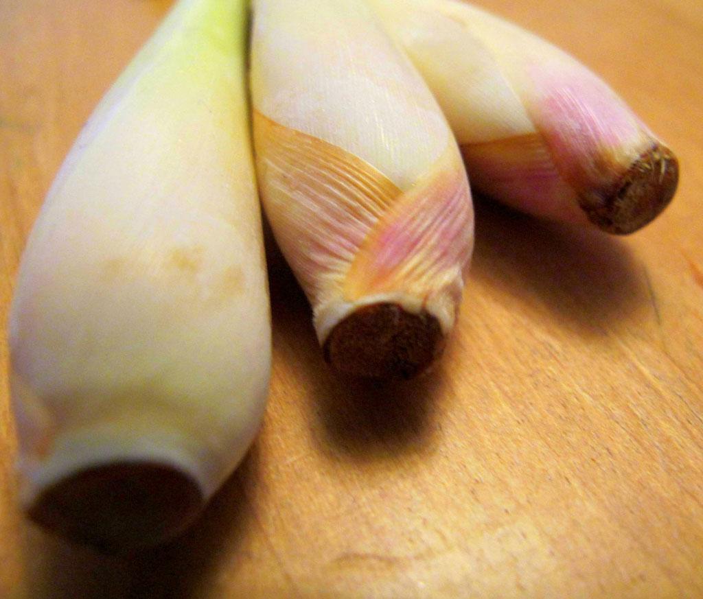 frisches Zitronengras