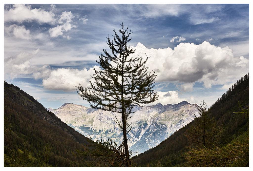 montagne © jc Lett