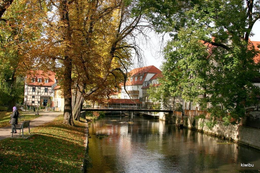 Erfurt, Kleinvenedig