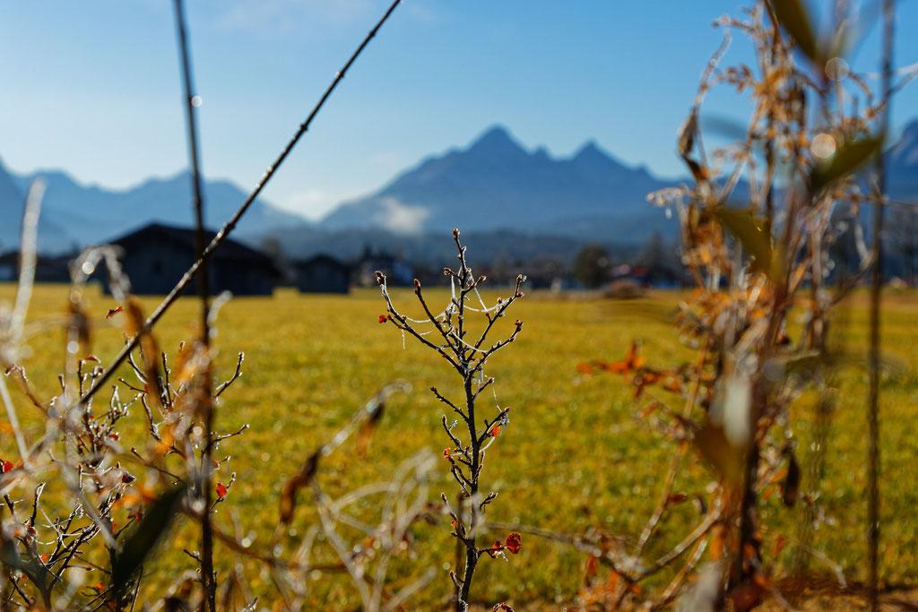 Am Ortsausgang von Wallgau Richtung Krün