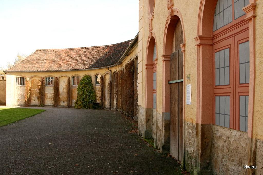 in Belvedere - Orangerie