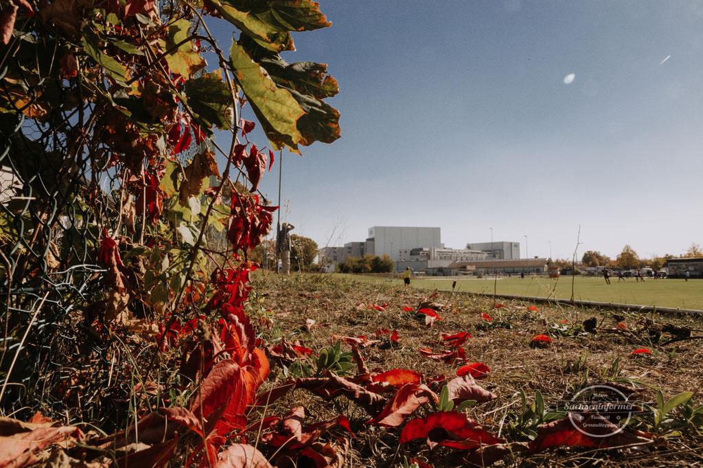 ASV Fürth - Stadion an der Magazinstraße