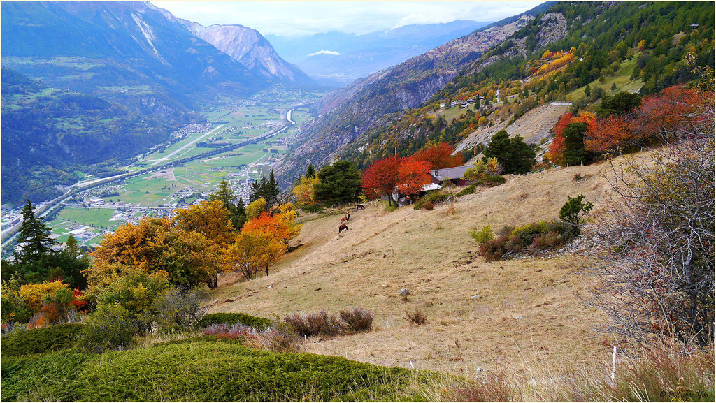 Indian Summer im Wallis 07.10.2015