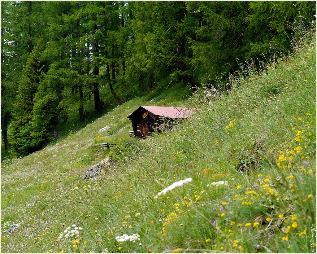 Landschaftspark Binntal 28.06.2014