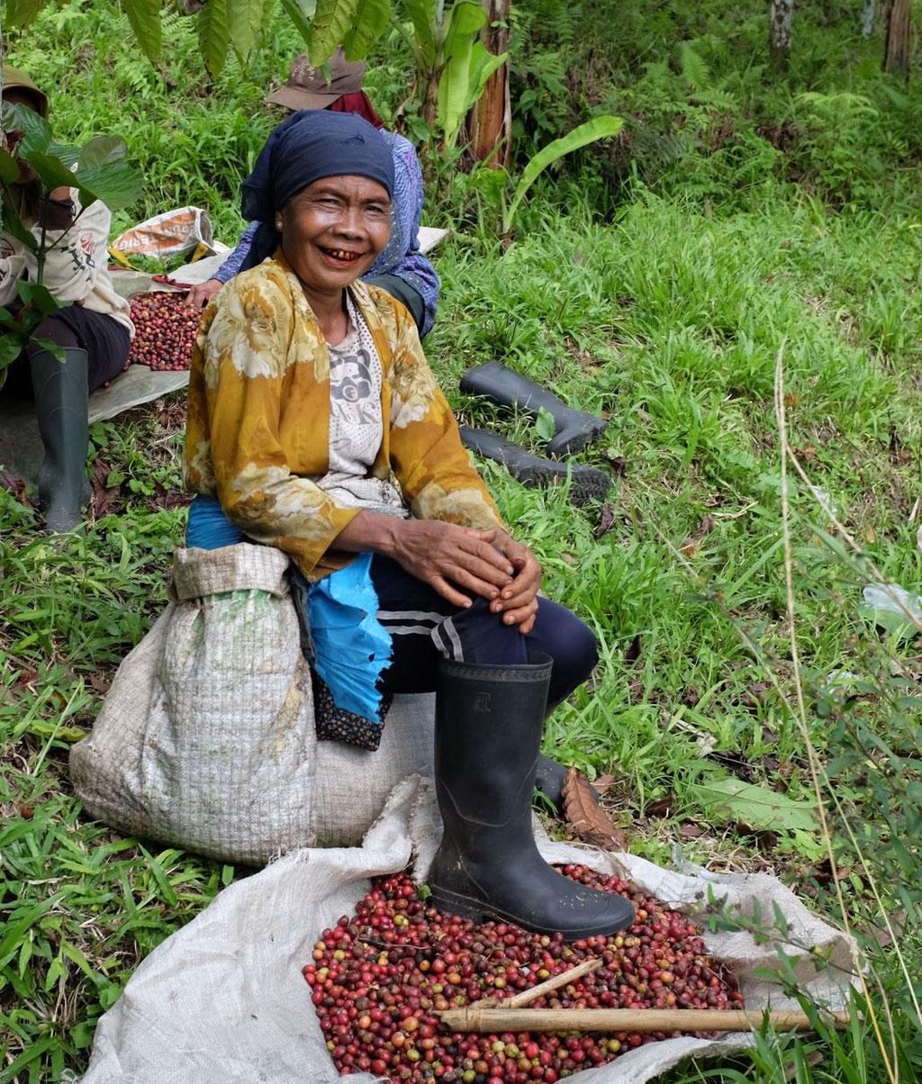Arbeiterin der Kaffeeplantage am Ijen Plateau