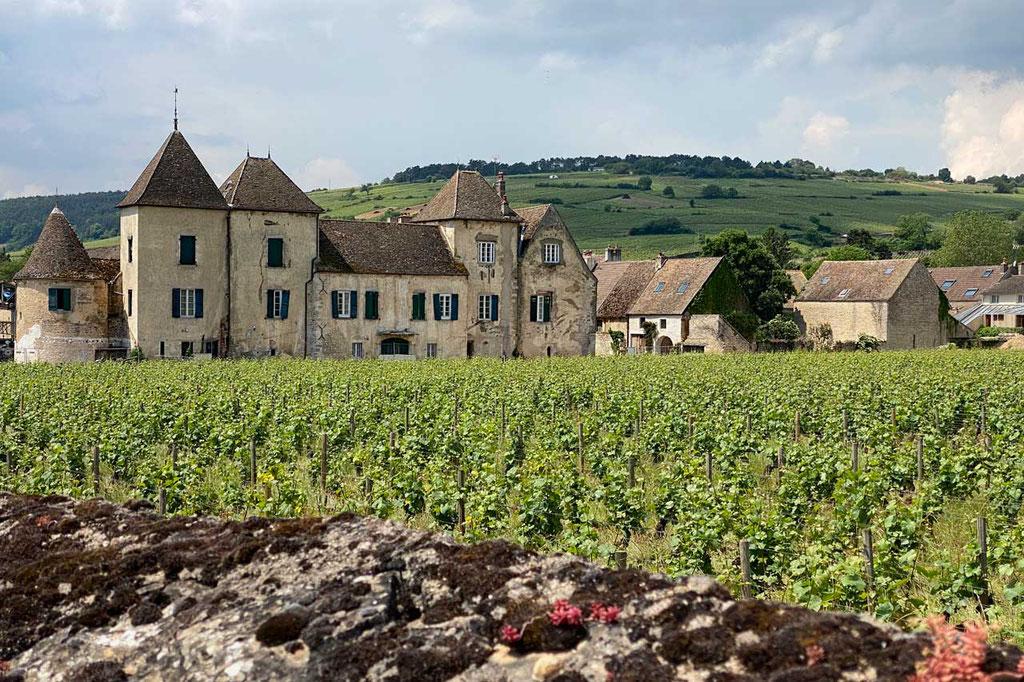 Voie des Vignes Radroute durch die Côte de Beaune