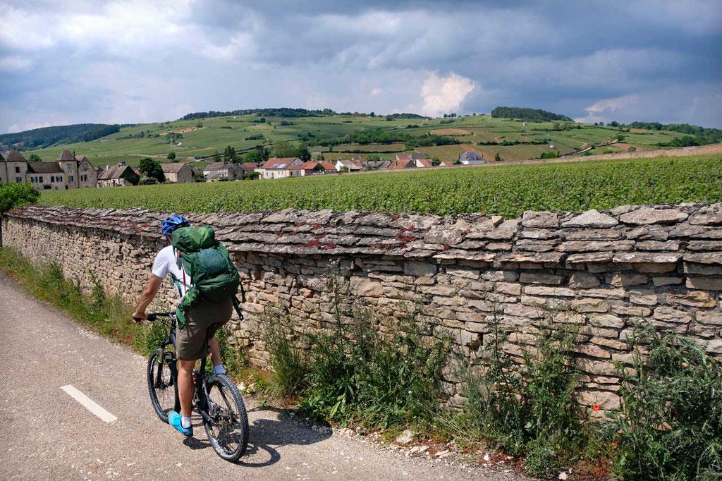 Voie des Vignes Radroute durch Weinberge bei Beaune