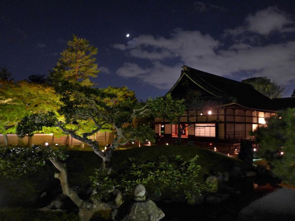 Kyoto Erlebnis, im Kodai-ji zum Night Illumination