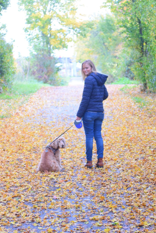 Waldspaziergang mit Hund. Bei herbstlichem Wetter und in buntem Laub.