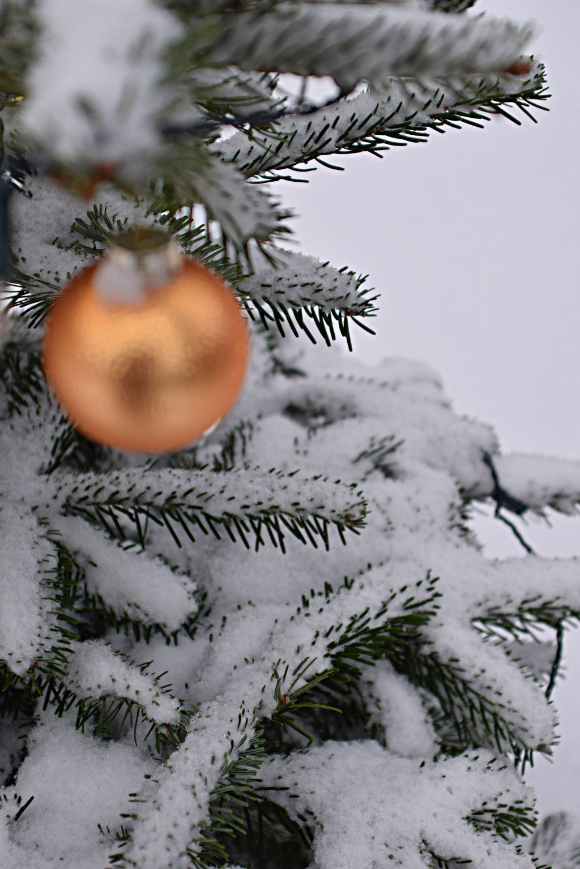 Christbaumkugel am Weihnachtsbaum