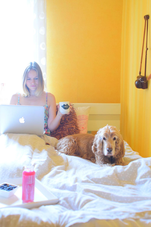 Gesunder Start in den Tag. Mit dem Hund morgens im Bett kuscheln.