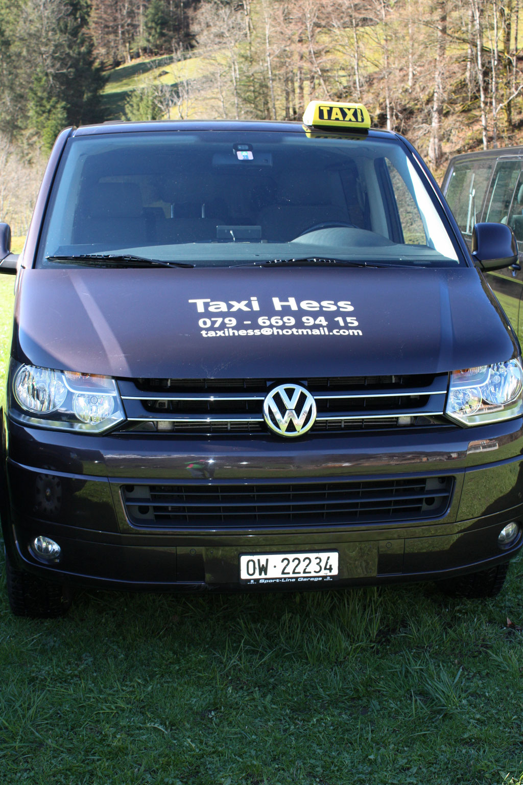 VW T5 in brown