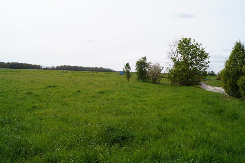 La ferme photovoltaïque devrait s'étendre sur 7 hectares.