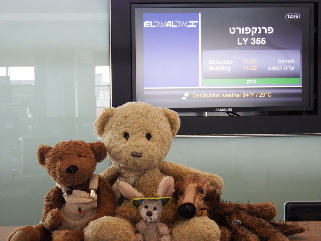 Kasimir, Cäsar, Fredi und Kerl am Check-In zur Ausreise aus Israel