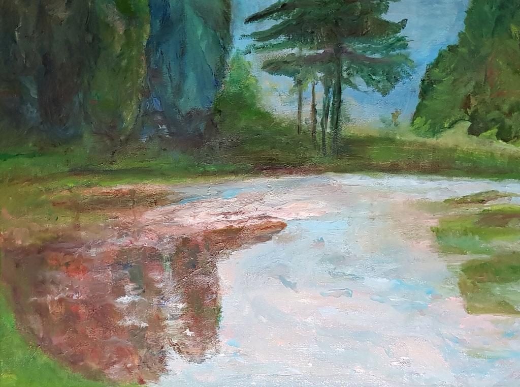 Paysage d'eau de Salzbourg-Huile 61x46