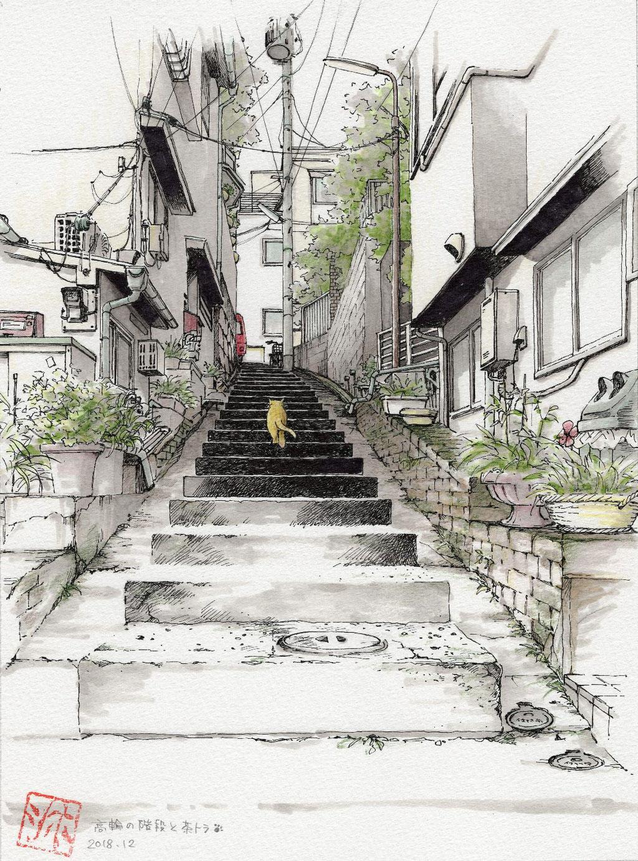 高輪の階段と茶トラ