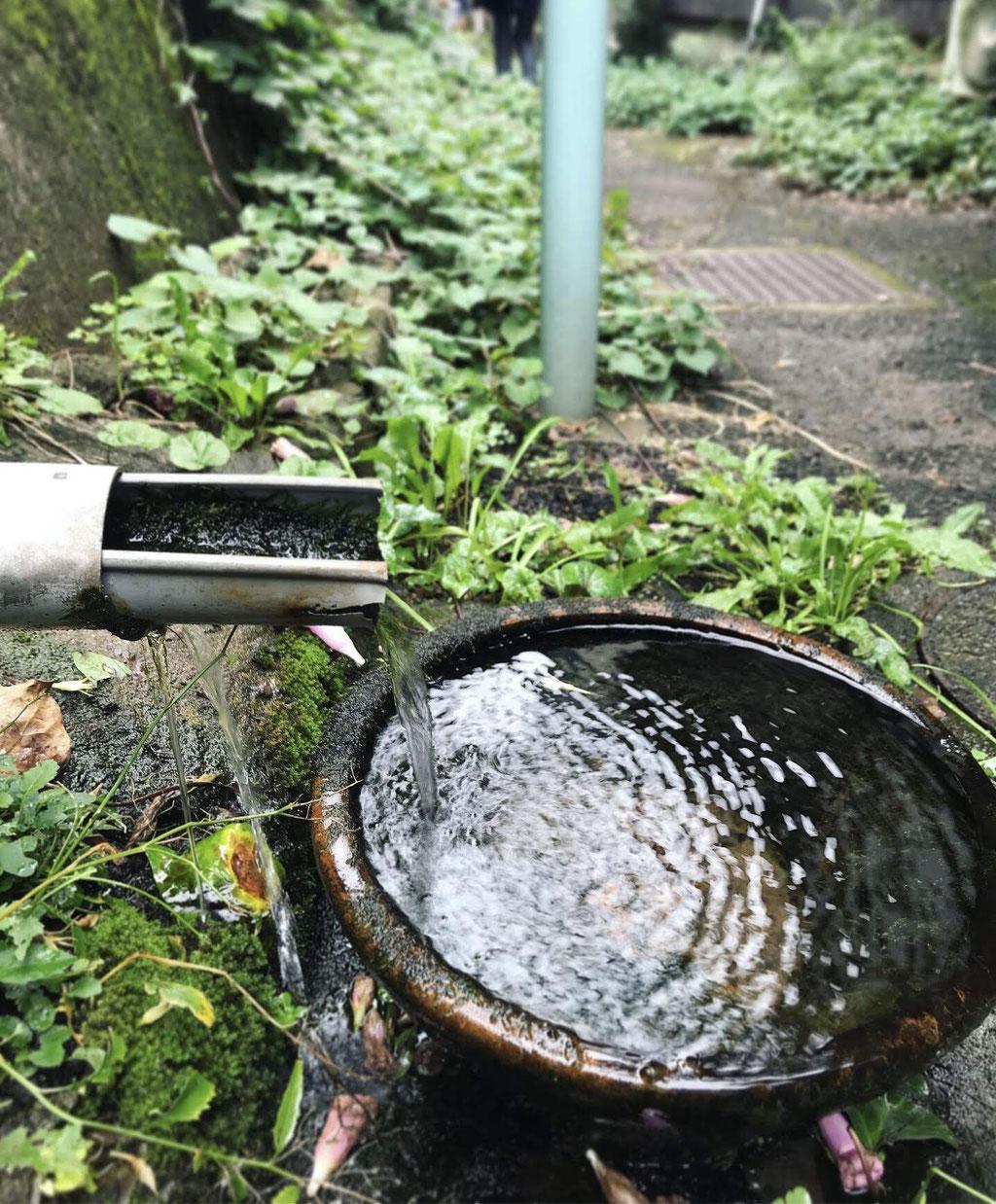 羅漢寺川の湧水