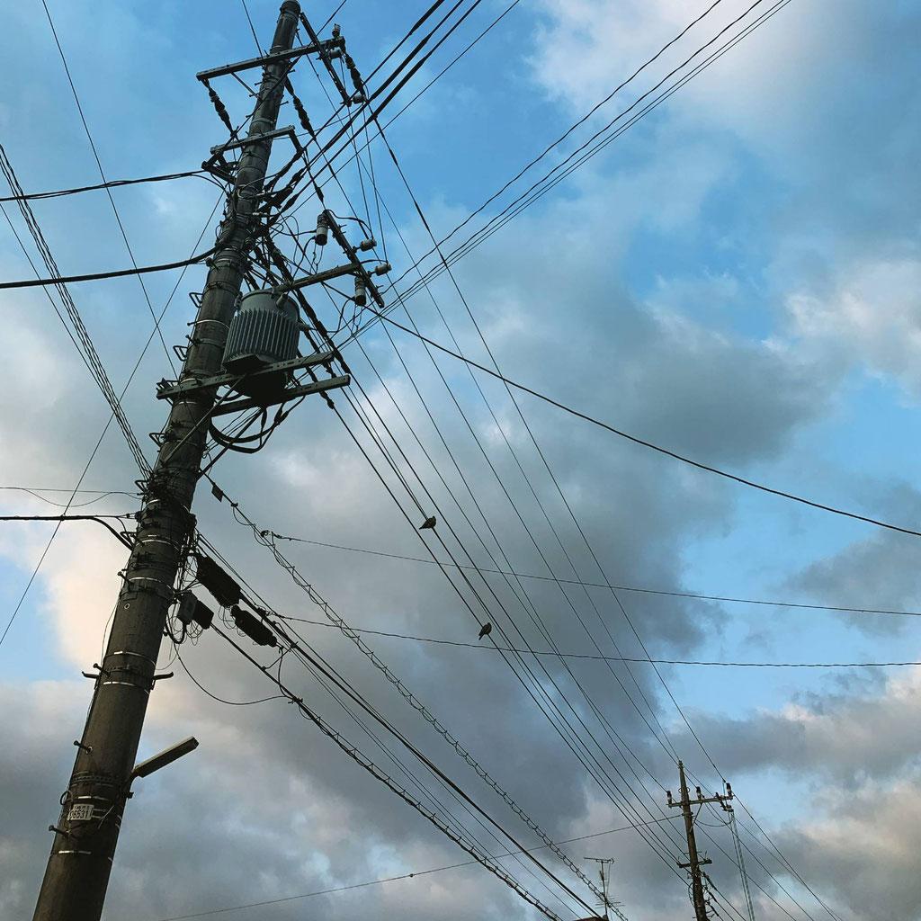 電線と鳥と空