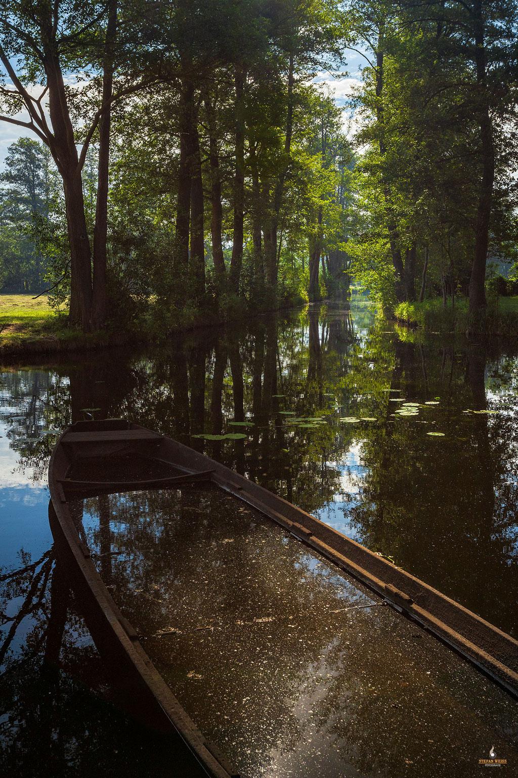 Altes Boot im Spreewald