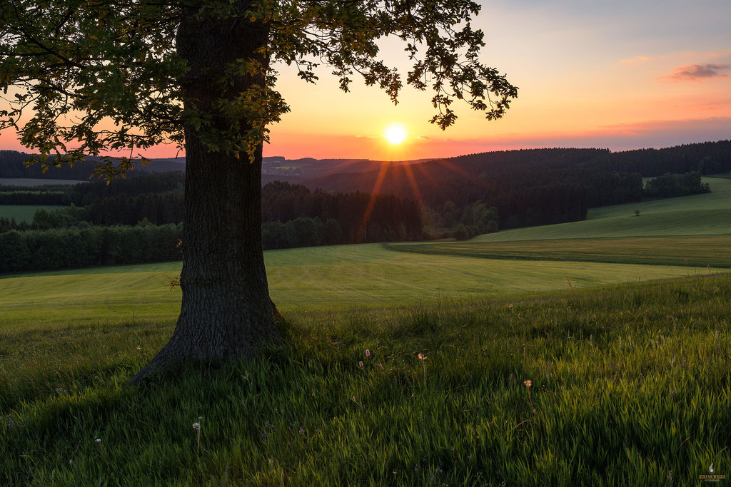 Sonnenuntergang bei Hormersdorf