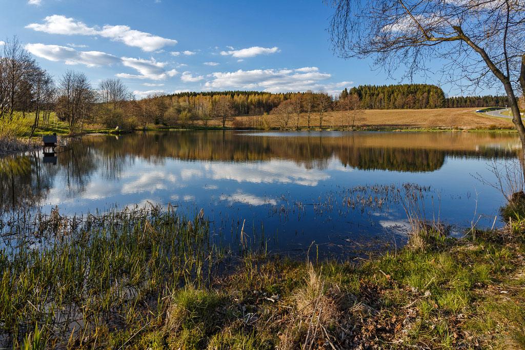 Der Schwarze Teich bei Auerbach