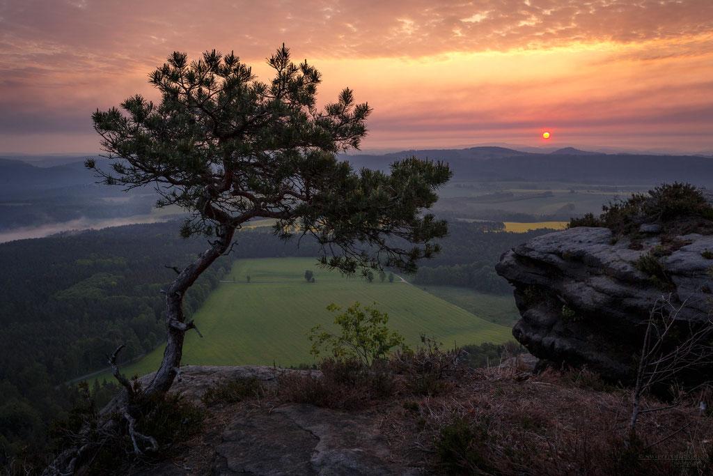 Sonnenaufgang auf dem Lilienstein mit Blick auf die Elbe und die Bastei