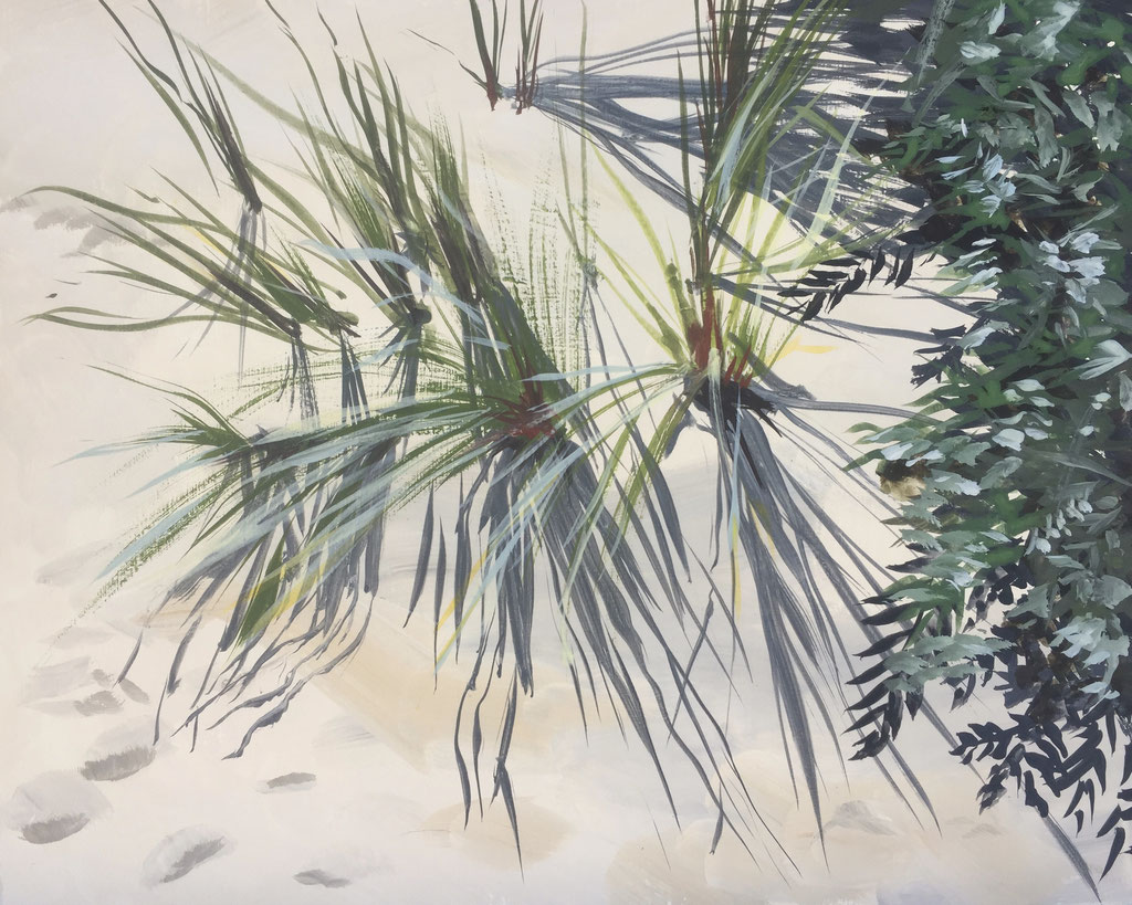 Helmgras, gouache on panel 20x25cm by Philine van der Vegte