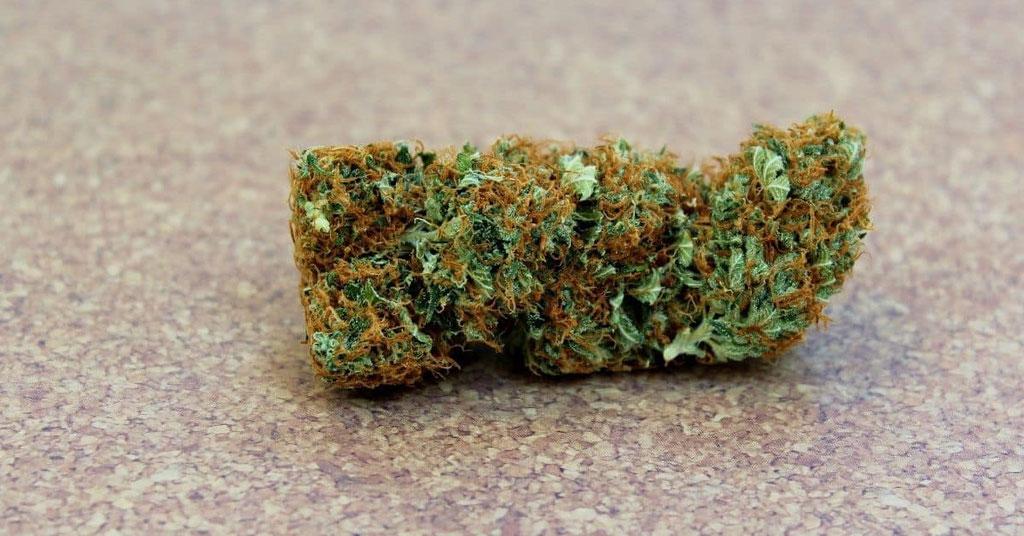 Cannabis Sorte für Butter 1
