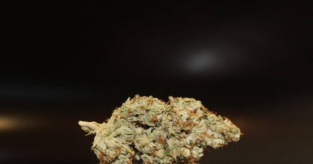Cannabis Sorte für Butter 2
