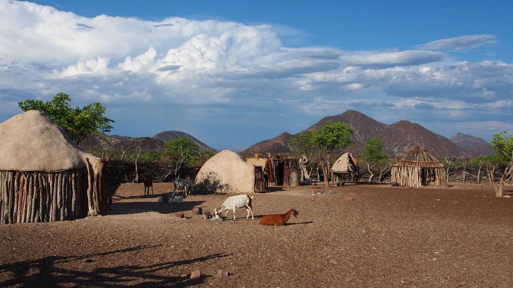 Village himba ; Kaokoland ; Namibie