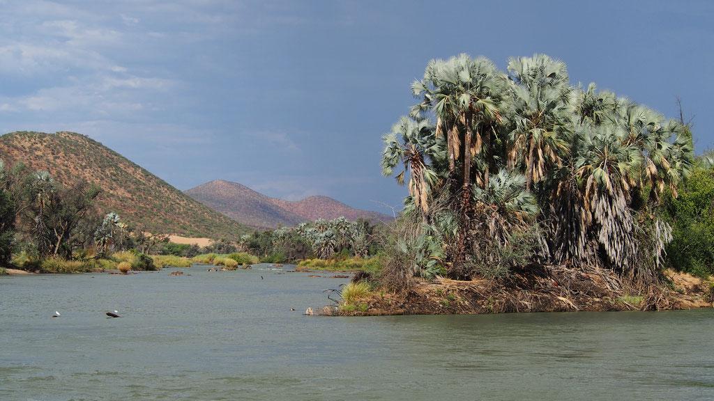 Fleuve Kunene à Epupa ; Kaokoland ; Namibie