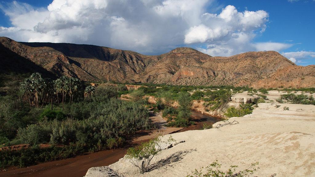 Khowarib ; Kaokoland ; Namibie