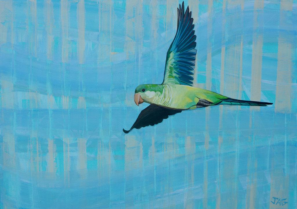 'Free Bird' acrylic on canvas, 2021, 70 x 50cm - price on request