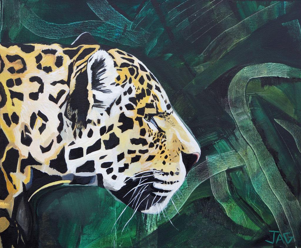 'Jacobo' acrylic on canvas, 2020, 60 x 50cm - price on request