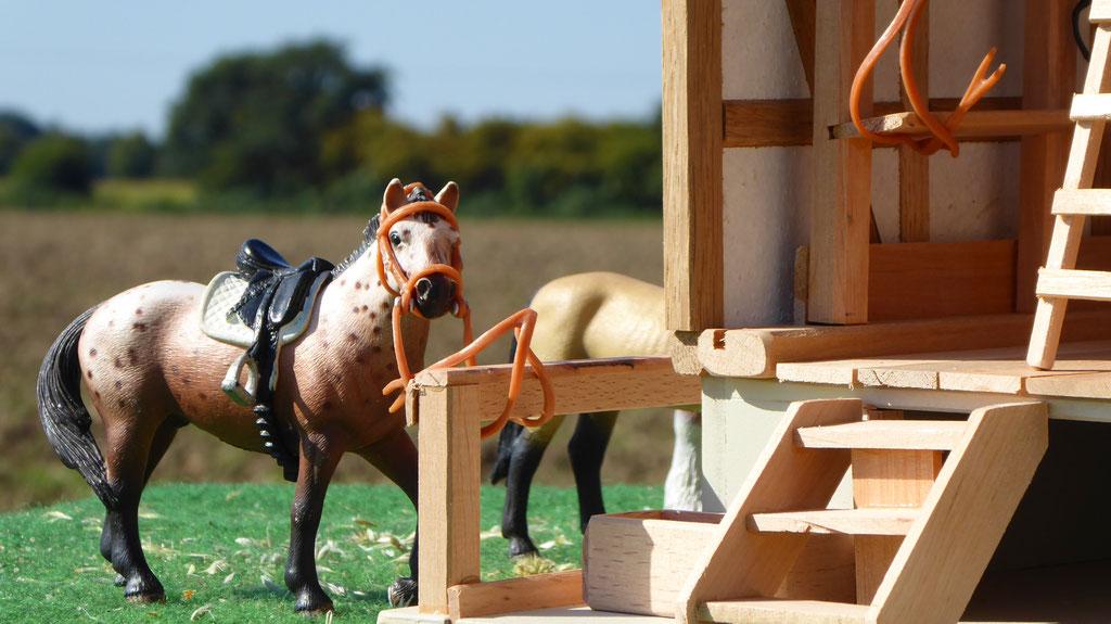 Absatteln der Schleich Pferde