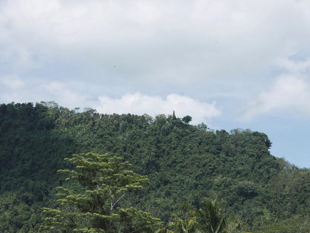 Le picot qui dépasse la ligne de la canopée, c'est ce temple qu'on vise...