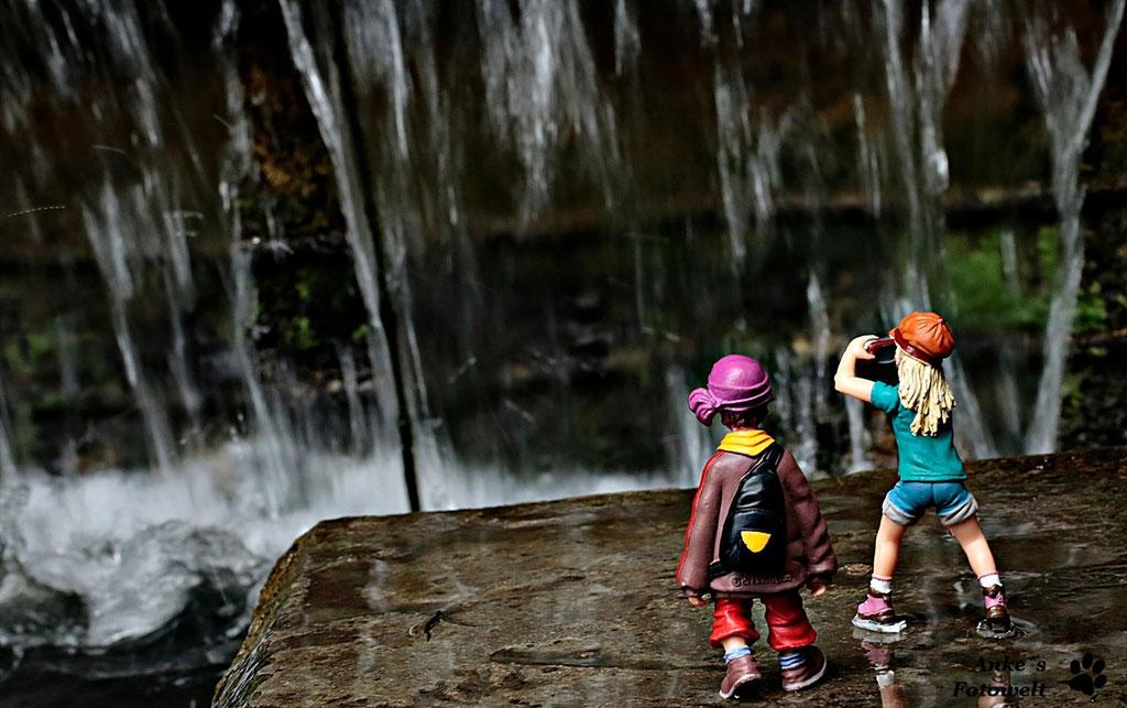 Merle am Wasserfall