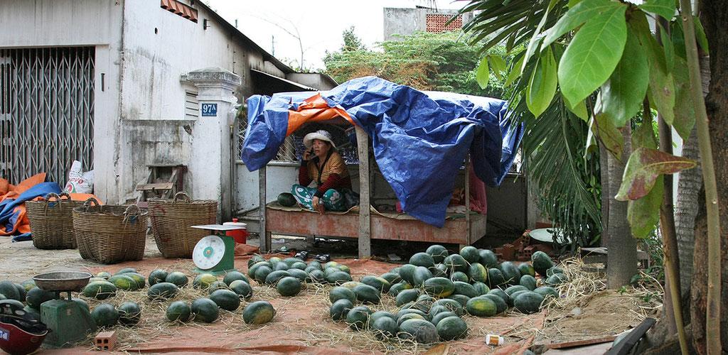 melon exchange