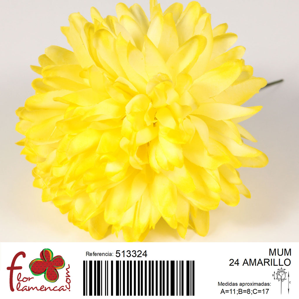 Crisantemo Flor Flamenca modelo Mum color amarillo 24