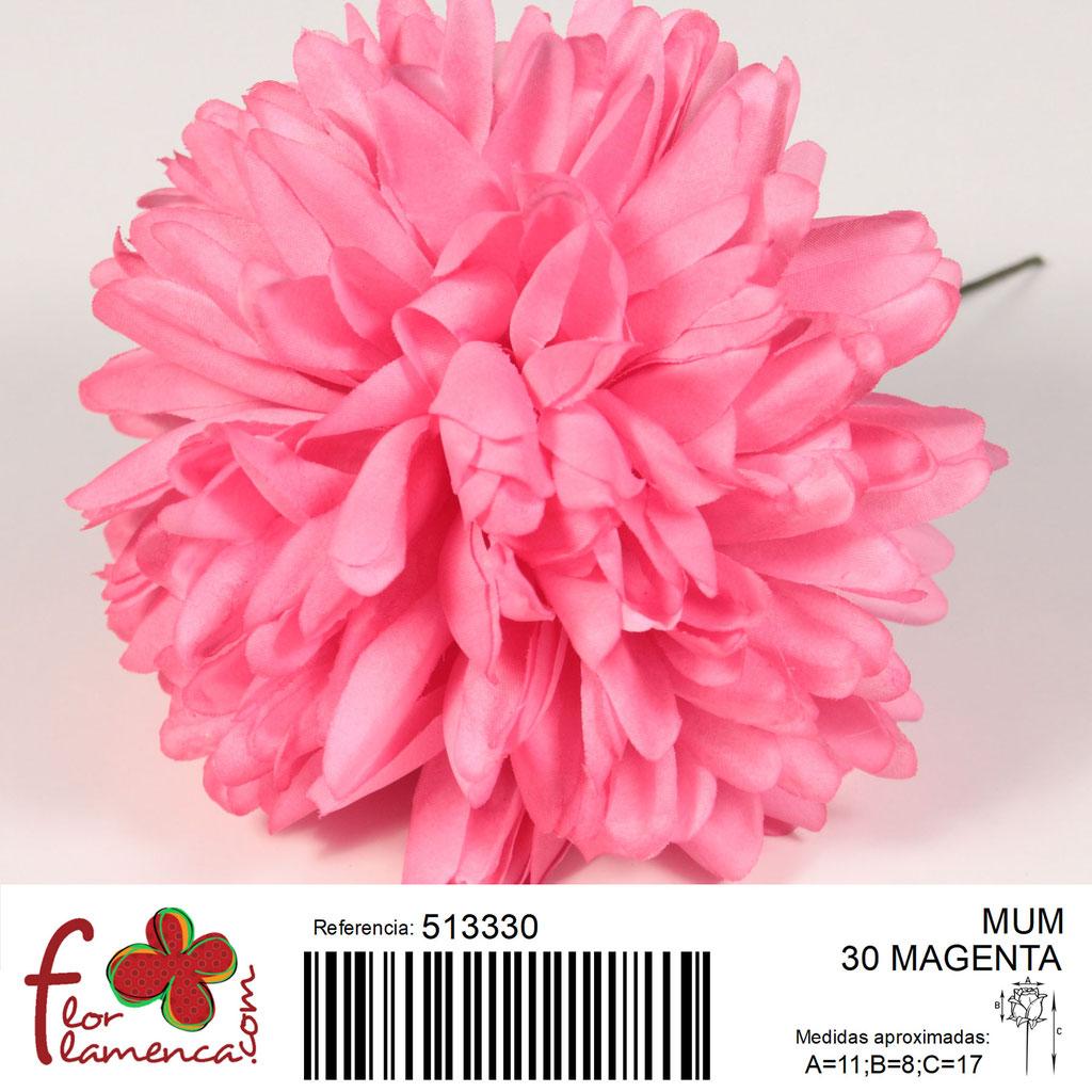 Crisantemo Flor Flamenca modelo Mum color magenta 30