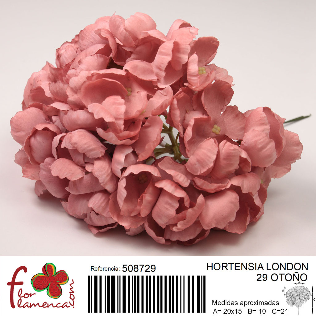 Hortensia Flor Flamenca modelo London color otoño 29